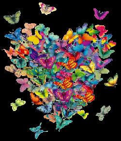 mariposas_corazon1-1-e1406389593759 Para ti, con todo mi amor.