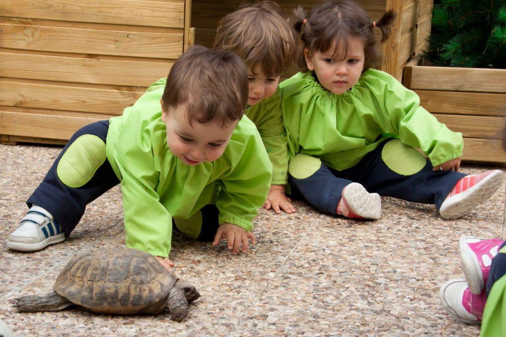 1granvia-1024x683 Educación Infantil, mentes curiosas