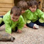 Educación Infantil, mentes curiosas